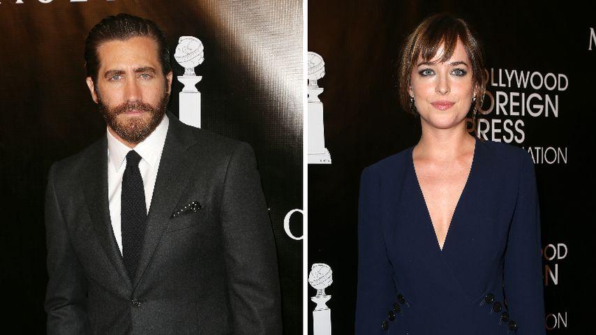 2. Liebes-Chance für Jake Gyllenhaal & Dakota Johnson?