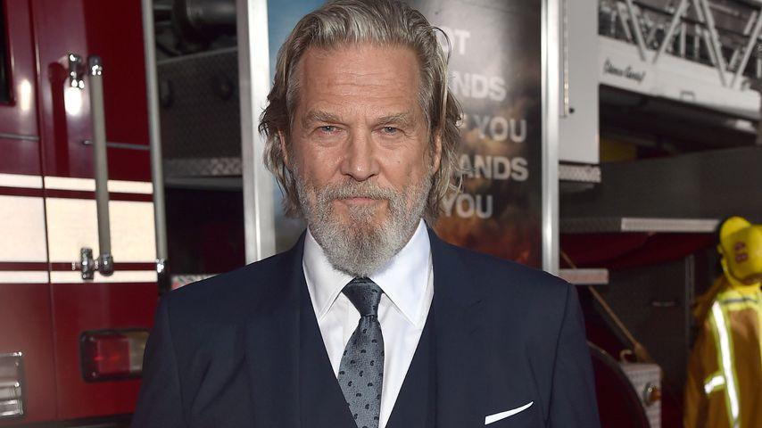 Jeff Bridges, Hollywood-Star