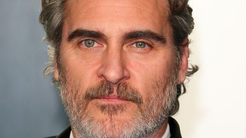 Joaquin Phoenix rettete nach den Oscars Kühe aus Schlachthof