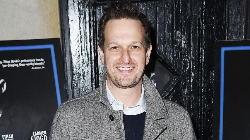 Josh Charles, TV-Star