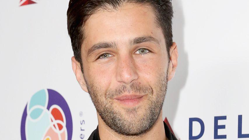 Josh Peck, Schauspieler
