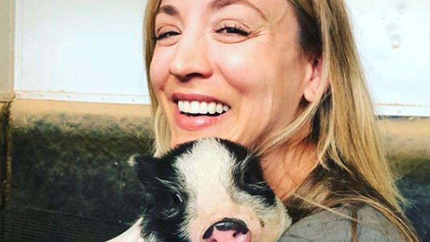 Kaley Cuoco mit einem ihrer Mini-Schweine, April 2020