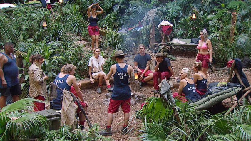 Kandidaten im Dschungelcamp, Tag 5