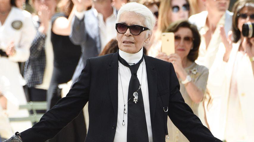 Promis fassungslos: Sie trauern um Modezar Karl Lagerfeld!