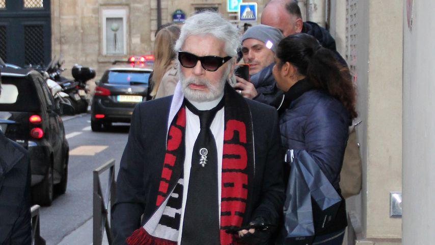 Vollbart-Status erreicht: Karl Lagerfeld rockt neuen Look