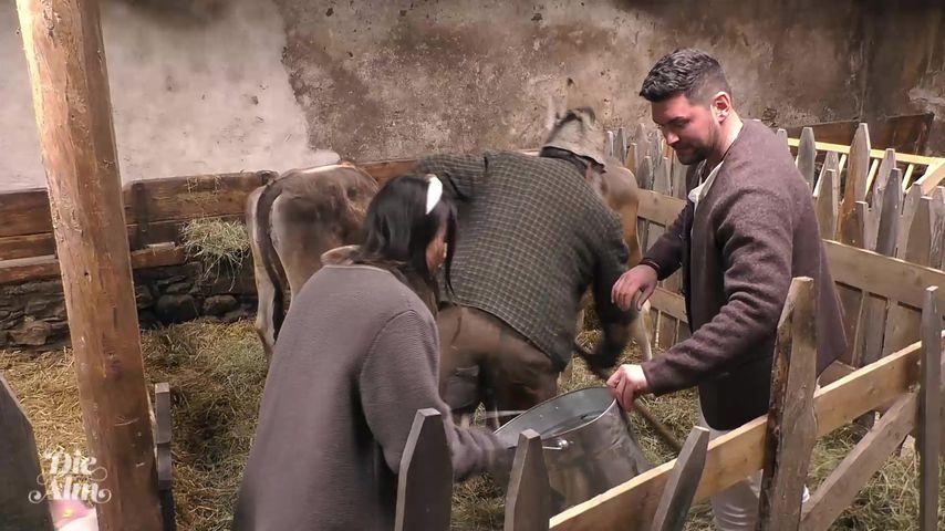 Katharina, Ioannis und der Almöhi im Stall