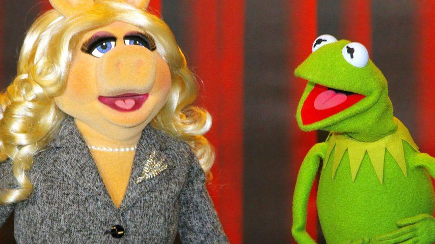 Miss Piggy & Kermit der Frosch: Liebes-Aus nach 30 Jahren!