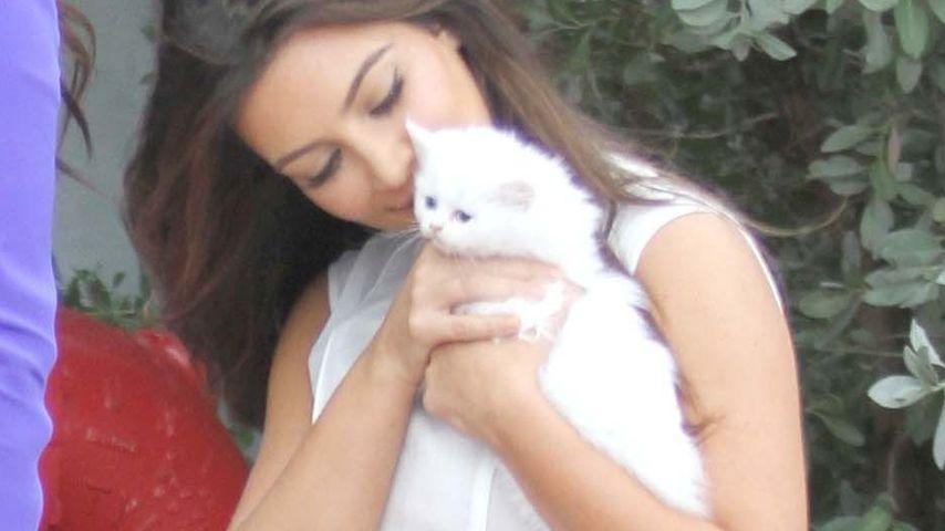 Kim Kardashian kuschelt mit Kätzchen von Kanye