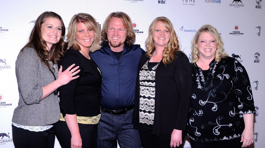 Robyn Brown, Meri Brown, Kody Brown, Christine Brown und Janelle Brown, 2012