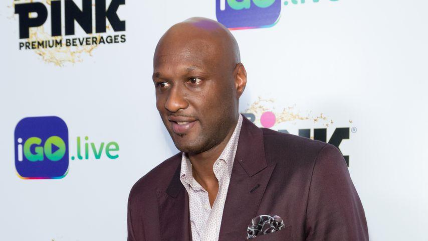 Lamar Odom, Basketballer