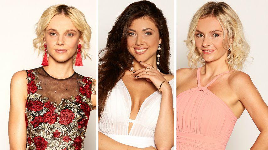 Lara, Mariya & Claudia: So erklären sie sich Bachelor-Exit