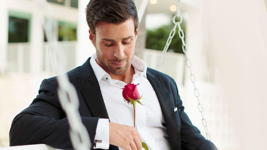 """Nach der letzten Rose: Darf """"Der Bachelor"""" abgesetzt werden?"""