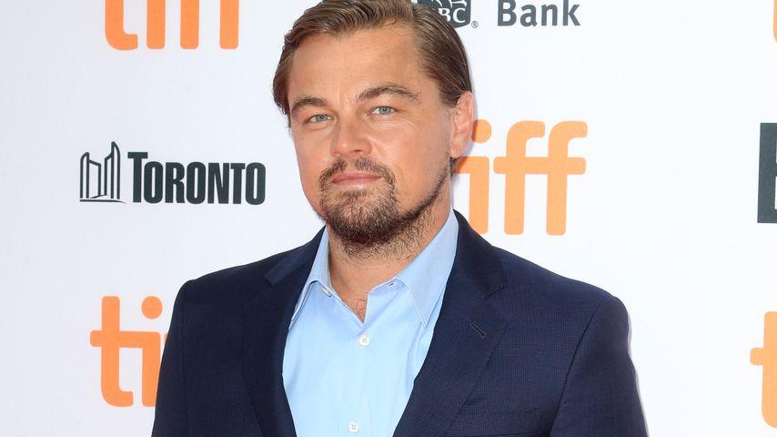 Doch nicht gezähmt? Leonardo DiCaprio feiert die Nacht durch