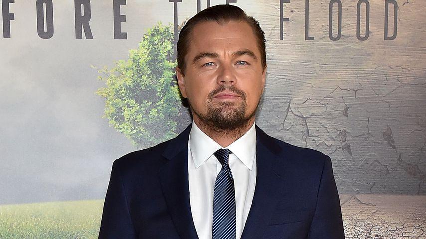 Stinkefinger beim Oscar: Das Netz feiert Leonardo DiCaprio!