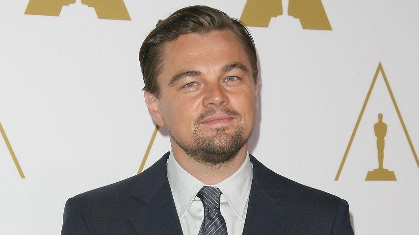 Er hat ihn! Leonardo DiCaprio gewinnt seinen ersten Oscar