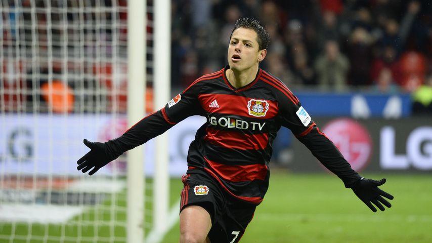 Chicharito, mexikanischer Fußball-Star von Bayer Leverkusen