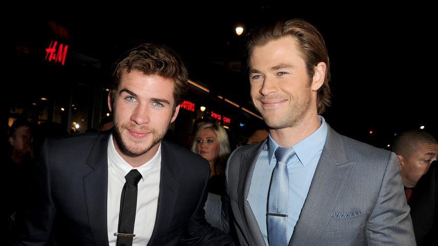 Liam Hemsworth und Chris Hemsworth in Hollywood, 2013