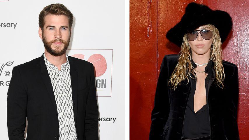 Nach Mileys Flirt: Ihr Ex Liam zeigt sexy Rache-Muskeln