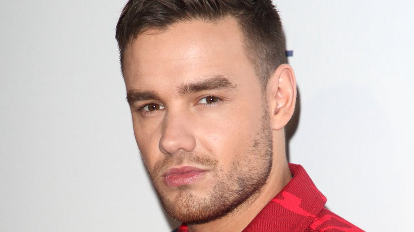 Liam Payne, Dezember 2019