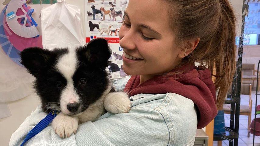YouTube-Star Melina Sophie ist jetzt zweifache Hunde-Mama!