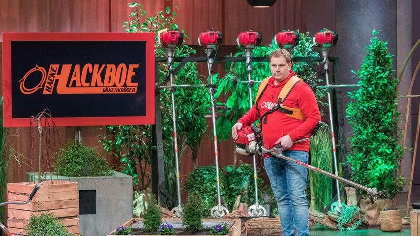 """Kein """"Höhle der Löwen""""-Deal: Ist Hackboe-Gründer enttäuscht?"""