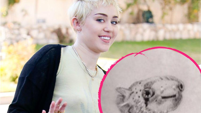 Crazy Miley Cyrus: Trauer-Tattoo für toten Fisch
