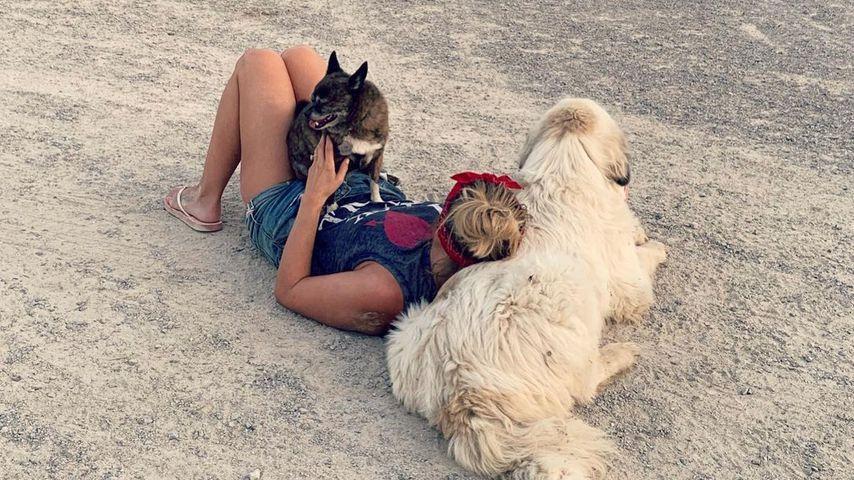Miranda Lambert mit ihren Hunden