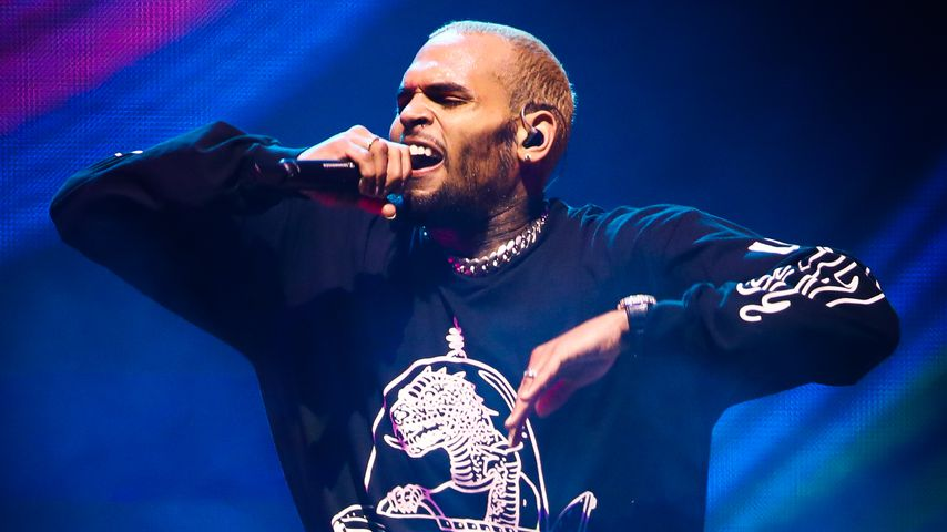 Musiker Chris Brown
