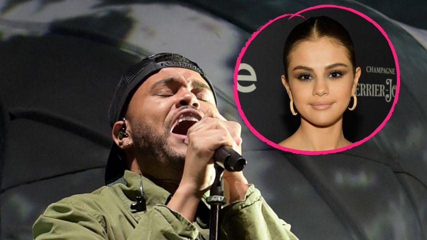 Wegen Ex Selena? The Weeknd weint beim Coachella-Festival!