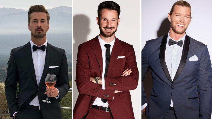 Nicolas, Alex und Kim: Wer ist der heißeste Prince Charming?