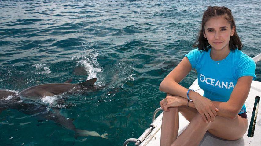 Hai-Liebe: Nina Dobrev ist jetzt Tierschutz-Botschafterin