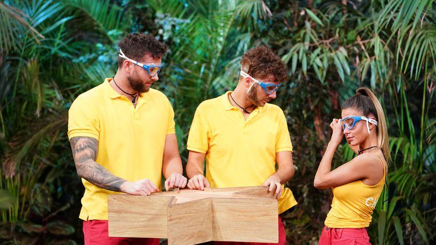Oli, Sam und Christina, Dschungelshow-Teilnehmer 2021