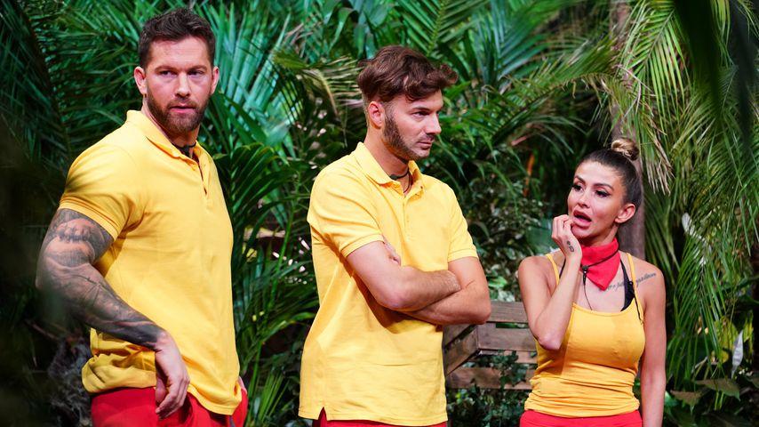Oli, Sam und Christina in der Dschungelshow