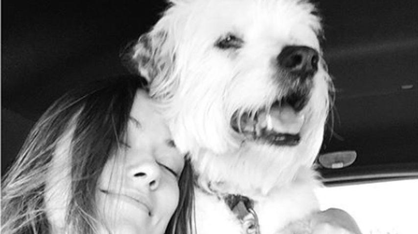 Olivia Wilde und ihr Hund Paco