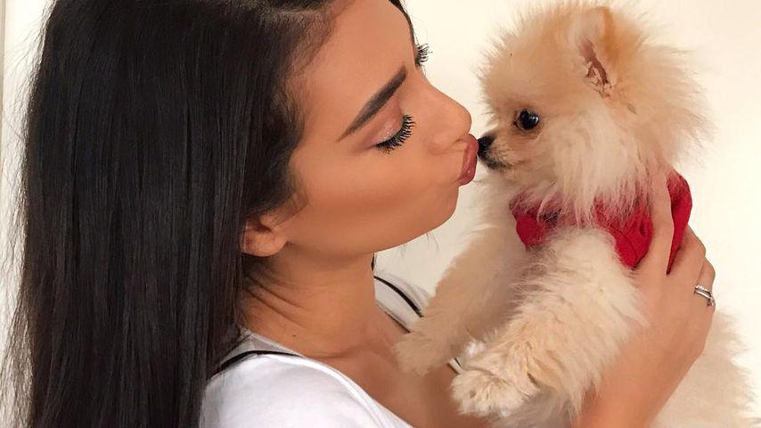 Nach Drama & Tränen um Hund Bianco: So geht's Paola Maria!