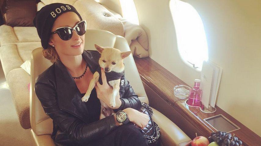 Paris Hilton mit ihrem Hund Peter Pan