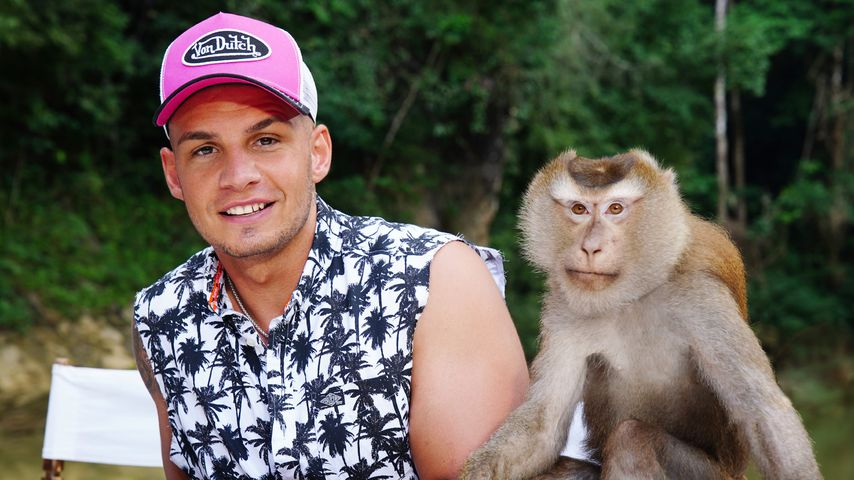 Pietro Lombardi und ein Affe