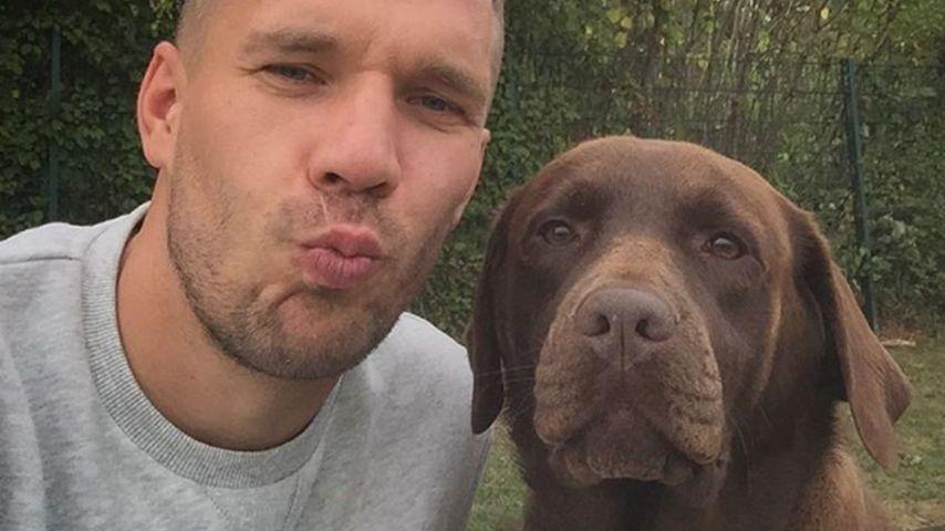 """Tierisches Team: Poldi zeigt vierbeinigen """"besten Freund"""""""