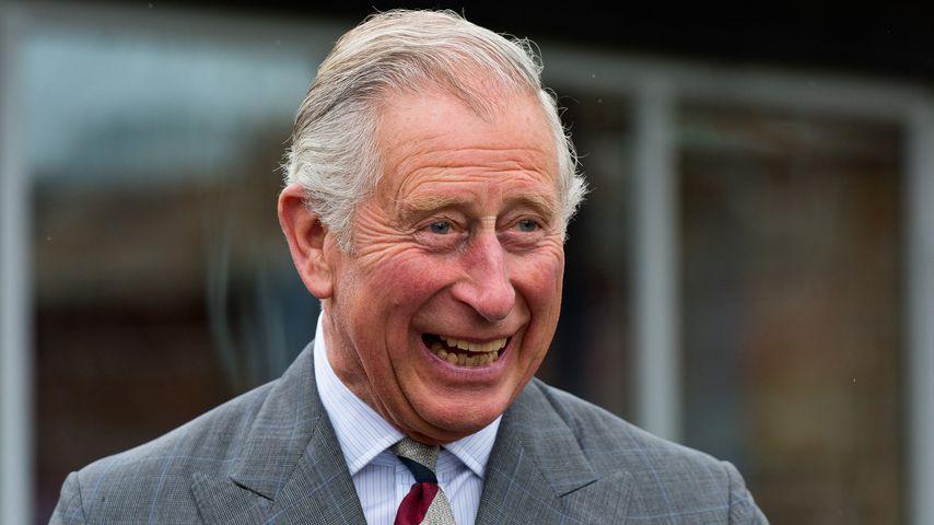 Prinz Charles im Mai 2015