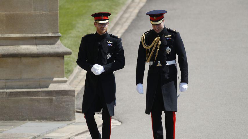 Sechs Monate kein Kontakt zwischen Prinz Harry und William?