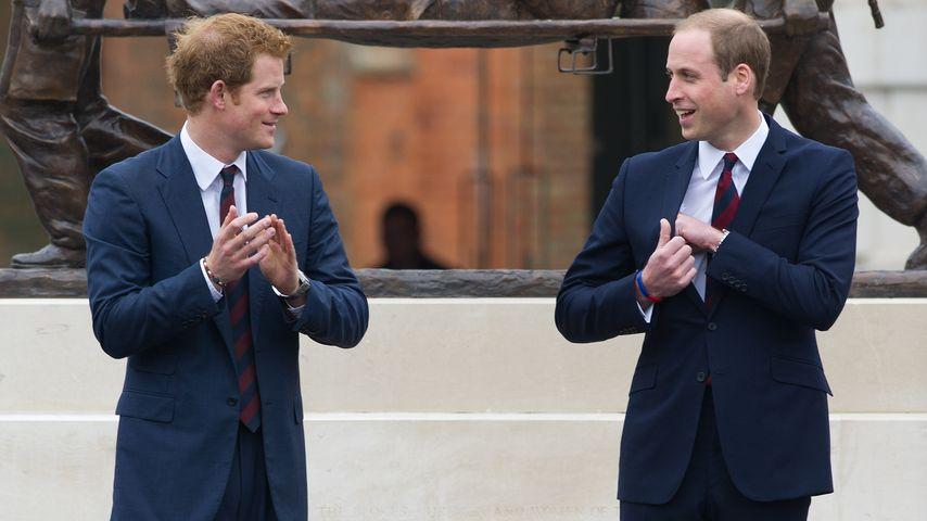 Job bei Prinz Harry & William? Sie sind auf der Suche!