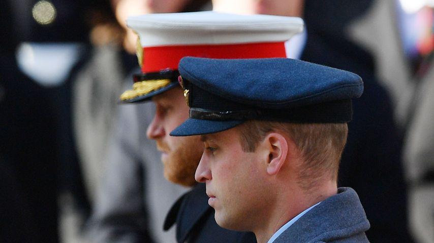 Prinz Harry und Prinz William im November 2019