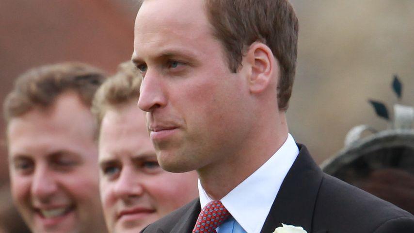 Fies! Prinz Williams Ex-Diensthunde eingeschläfert