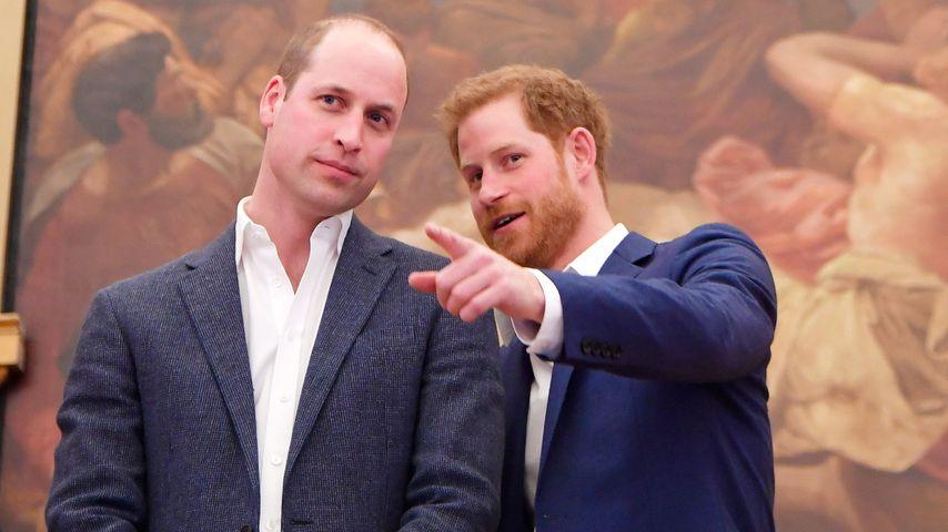 Wie sein Bruder William: Verzichtet Prinz Harry auf Ehering?