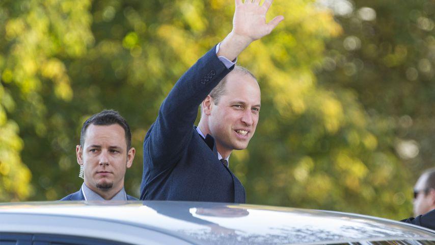 Ohne Kate, aber gut gelaunt: William strahlt in Neuseeland