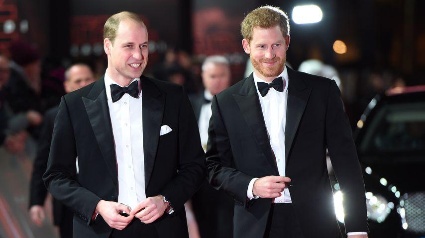 Prinz William und Prinz Harry im Dezember 2017