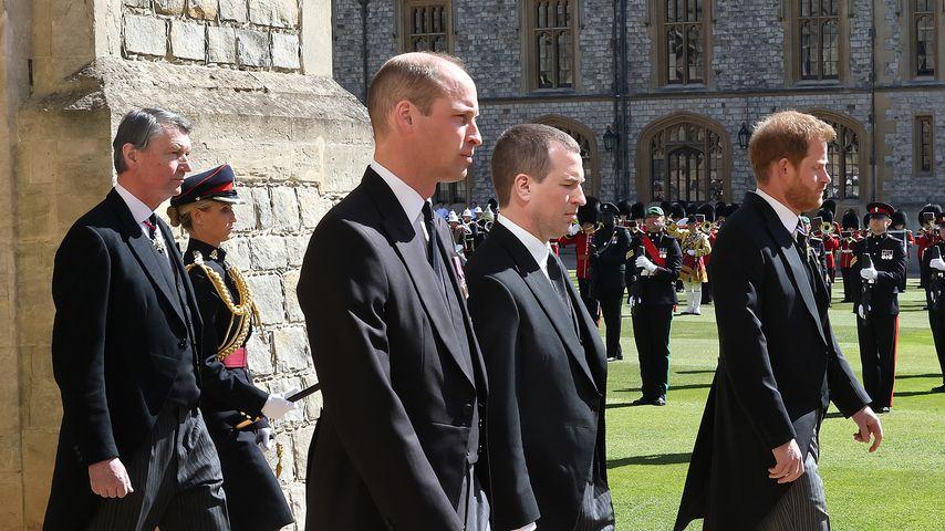 Prinz William, Peter Phillips und Prinz Harry