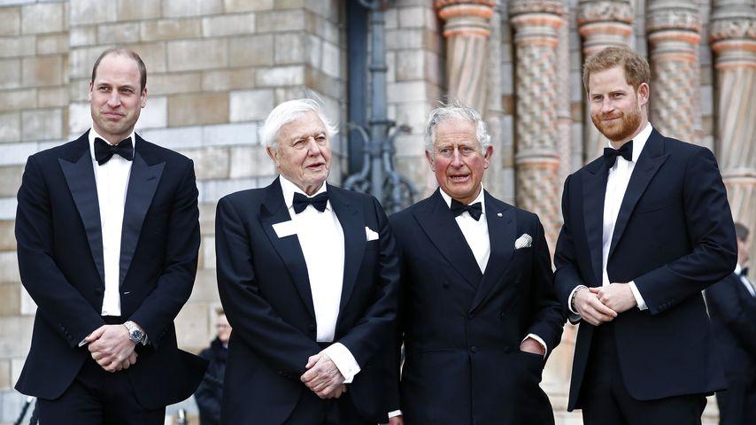 Prinz William, Sir David Attenborough, Prinz Charles und Prinz Harry im April 2019 in London