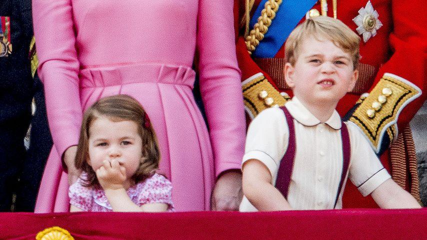 Royale Mini-Muffel: Neue Knallerfotos von George & Charlotte