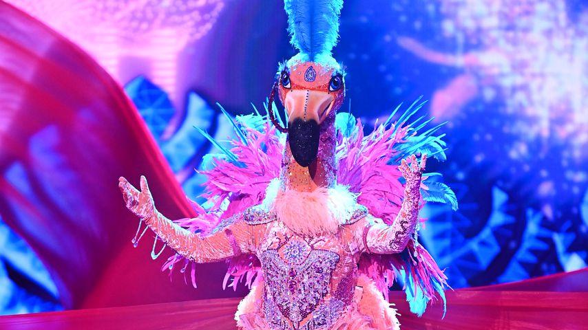 "Ross Antony als Flamingo bei ""The Masked Singer"""